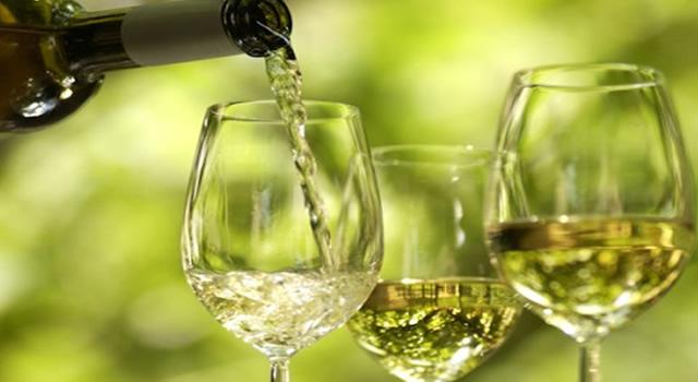 Degustação - Vinho Verde